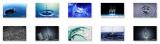 3D Motion Windows 7 Theme screenshot
