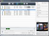 4Media iPod Video Converter screenshot