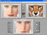 Abrosoft FantaMorph Pro screenshot