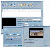 All FLV to Video Converter screenshot
