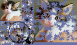 BrainsBreaker jigsaw puzzles screenshot