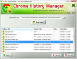 Chrome History Manager screenshot