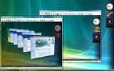 DameWare Mini Remote Control screenshot