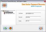 Data Doctor Password Recovery - MSN Explorer screenshot