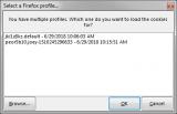 Firefox CookieMan screenshot