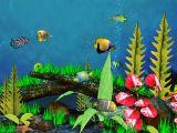 Fish Aquarium 3D Screensaver screenshot