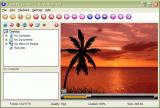 Flash Player XP screenshot