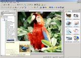 FotoFinish screenshot