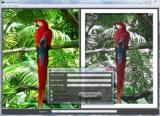 FotoSketcher Portable screenshot