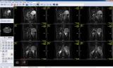 Makhaon Workstation screenshot