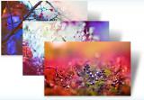 Microsoft Windows 7 Theme: Dreamgarden screenshot