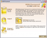 MSN Password screenshot