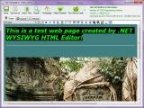 .NET WYSIWYG HTML Editor screenshot