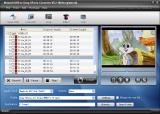 Nidesoft DVD to Sony XPeria Converter screenshot