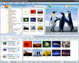 Photo DVD Maker screenshot