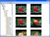 Photo Printer screenshot