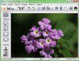 Photo Toolbox screenshot