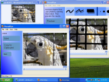 PhotoWipe screenshot