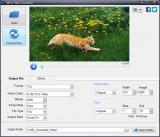 Program4Pc GIF to Flash Converter screenshot