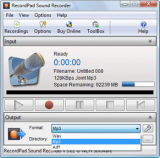 RecordPad Professional Edition screenshot