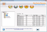 Removable Media Files Recovery Software screenshot