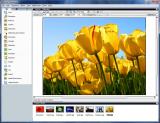Roxio MyDVD Video Lab HD screenshot