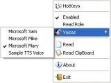 Screen Reader screenshot