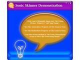 Sonic Skinner Control screenshot