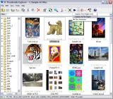 ST Thumbnails Explorer screenshot