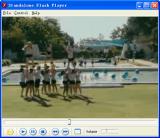 Standalone Flash Player screenshot