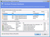 Svchost Process Analyzer screenshot