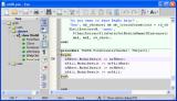 SynWrite Portable screenshot