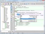SynWrite screenshot