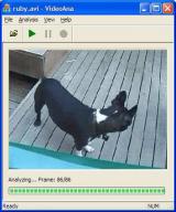 VideoAna screenshot