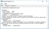 VideoInfo Express screenshot