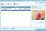 Wondershare PPT2Flash Standard screenshot